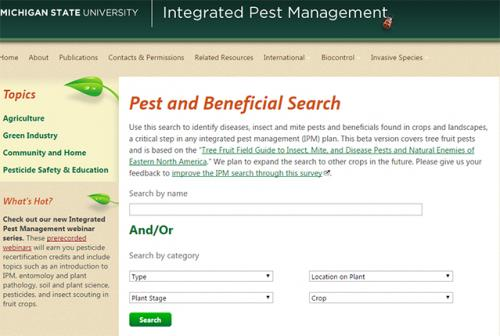 IPM Search