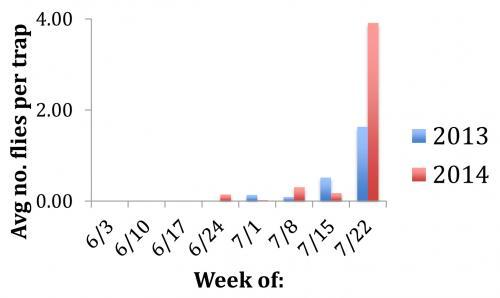 SWD report graph
