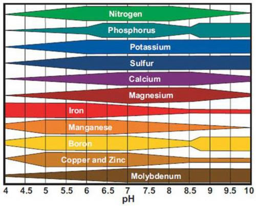 Nutrient availability in relation to pH graph