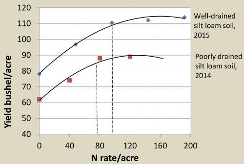Nitrogen fertilization of the 2016 wheat crop - MSU Extension