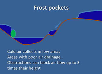 Frost pocket figure