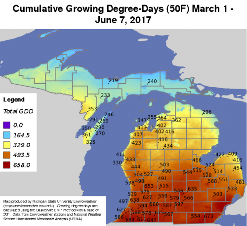 Cumulative growing degree days (GDD, base 50/max 86) from March 1 – June 7, 2017, from MSU's Enviroweather website.