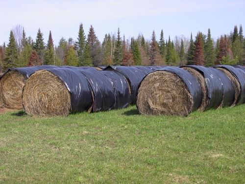 Large Round Bale Storage Msu Extension