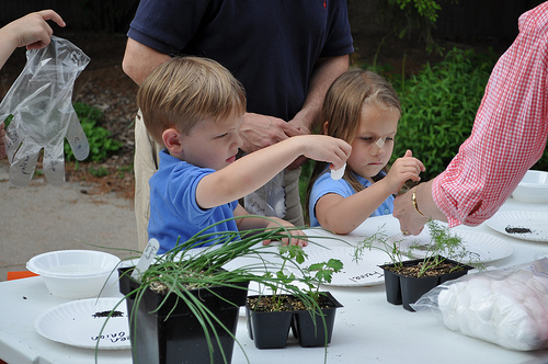 young kids investigating plants
