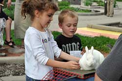 Young kids looking at rabbit