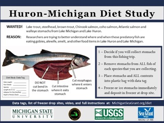 a poster describes the Fish Diet study stomach collection process