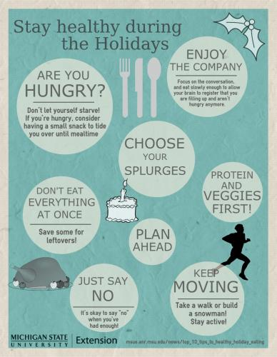 Holiday Healthy Eating Infographic