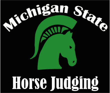 Learn more about how MSU Horse Judging teams have been a staple of the MSU Horse Program for decades.