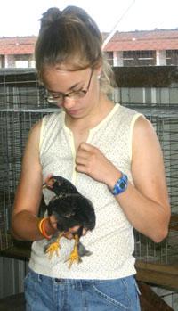Poultry Clinic Participant