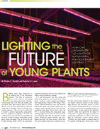 Lighting the Future of Young Plants