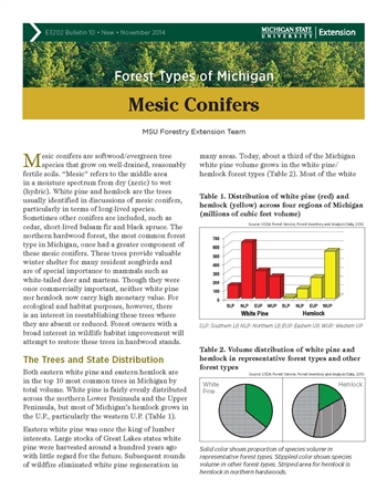 Forest Types of Michigan: Mesic Conifers (E3202-10)