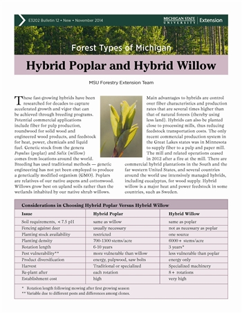 Forest Types of Michigan: Hybrid Popular and Hybrid Willow (E3202-12)
