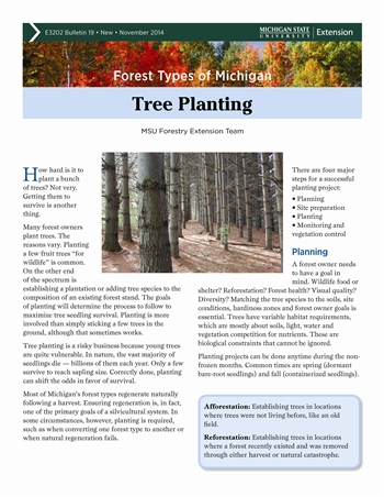 Forest Types of Michigan: Tree Planting (E3202-19)