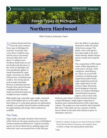 Forest Type of Michigan: Northern Hardwood (E3202-2)