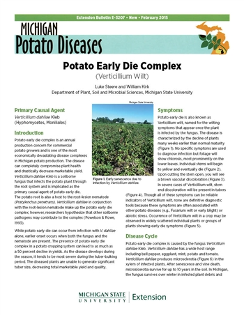 Potato Early Die Complex (E3207)