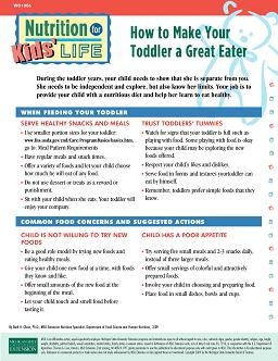 Nutrition for Kids' Life: How to Make Your Toddler a Great Eater (WO1006)