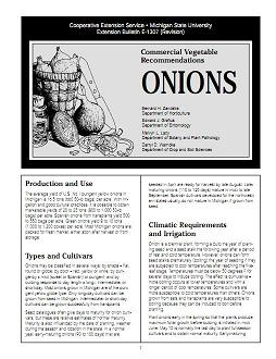 Onions: Commercial Vegetable Recommendations (E1307)