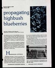 Propagating Highbush Blueberries (E1680)