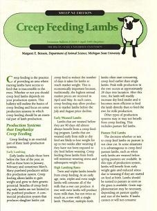 Creep Feeding Lambs (E2125)