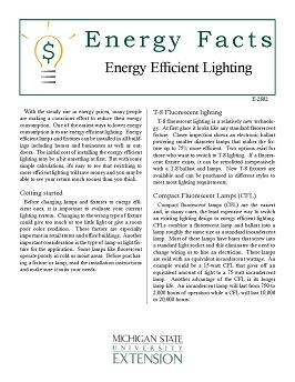 Home Maintenance and Improvements: Energy Efficient Lighting (E2802)