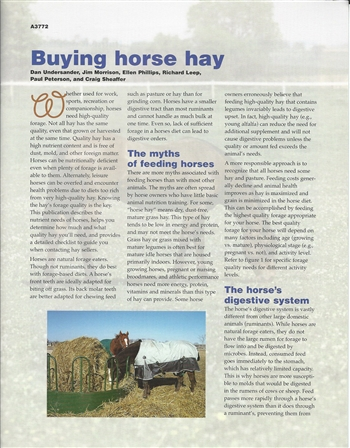 Buying Horse Hay (E2804)