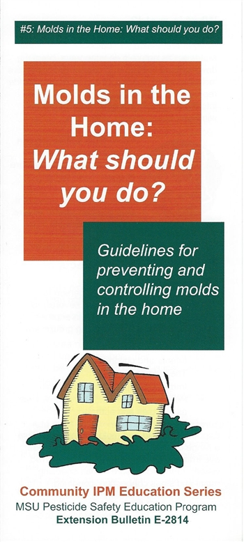 Molds in the Home: What Should You Do? (E2814)