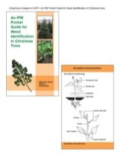 A Pocket Guide for IPM Weed Identification in Christmas Tree (E2975)