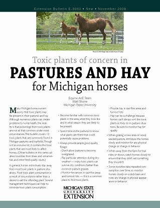 Toxic Plants of Concern in Pastures and Hay for Michigan Horses (E3060)
