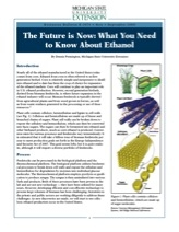 The Future is Now: What You Need to Know About Ethanol (E3076)