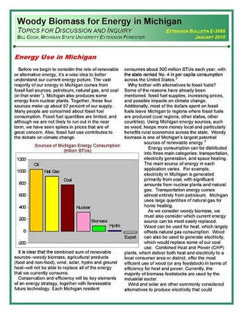 Woody Biomass for Energy in Michigan: Energy Use in Michigan (E3085)