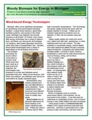 Woody Biomass for Energy in Michigan: Wood-based Energy Technologies (E3089)