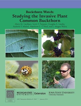 Buckthorn Watch: Studying the Invasive Plant Common Buckthorn (E3146)