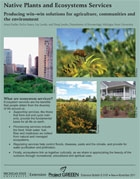 Native Plants and Ecosystems Services: Producing Win-Win Solutions for Agriculture (E3167)
