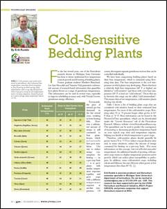 Cold-sensitive bedding plants