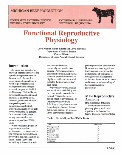 Functional Reproductive Physiology (E1969)