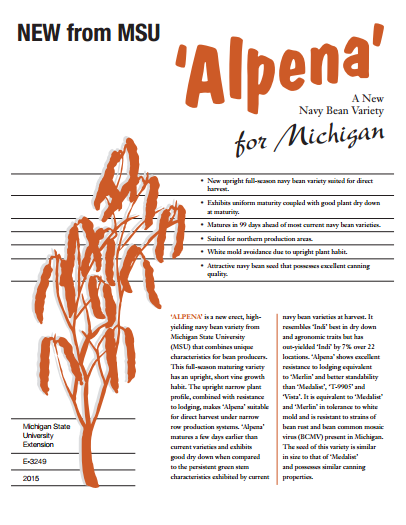 """Alpena"": A New Navy Bean Variety for Michigan (E3249)"