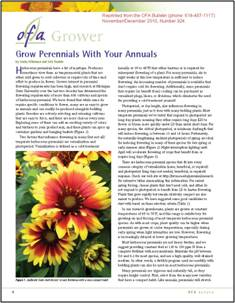 Grow perennials with your annuals