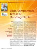 High-temperature stress of bedding plants