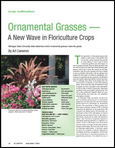 Ornamental grasses—A new wave in floriculture crops