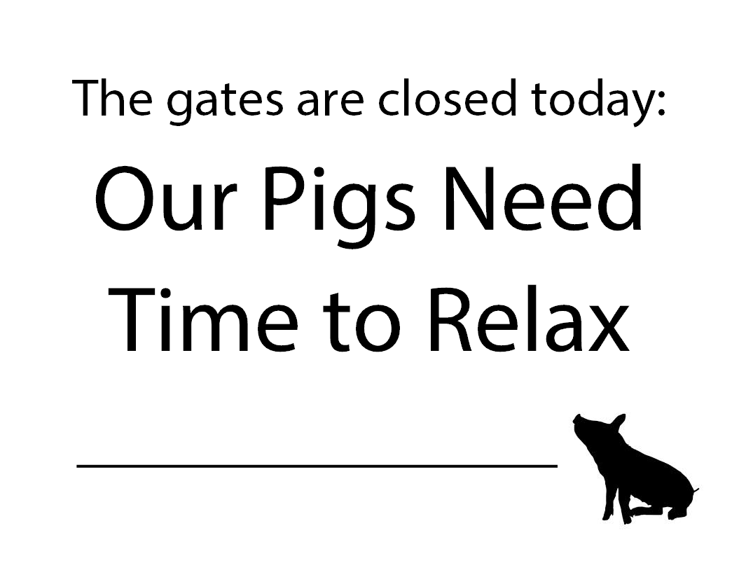 SIGN: Pig Barn Closed