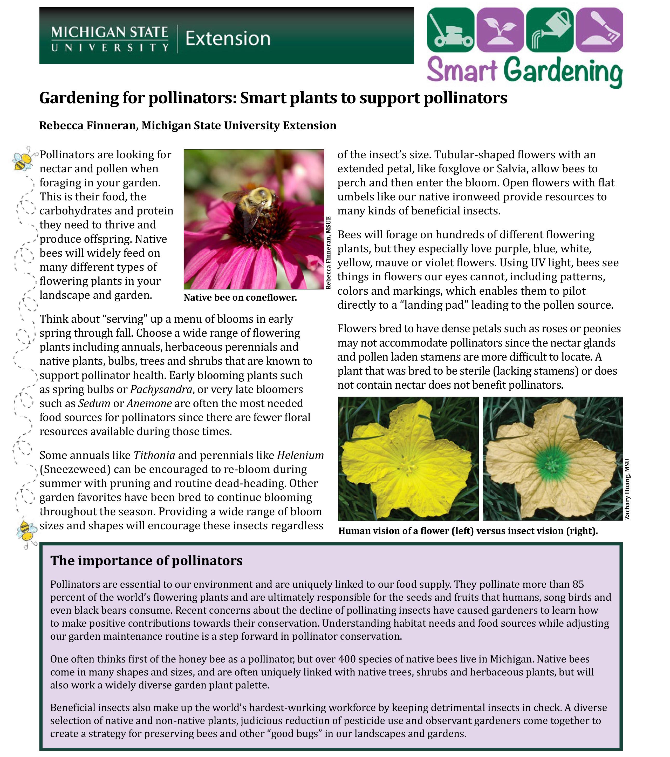 gardening for pollinators smart plants to support pollinators