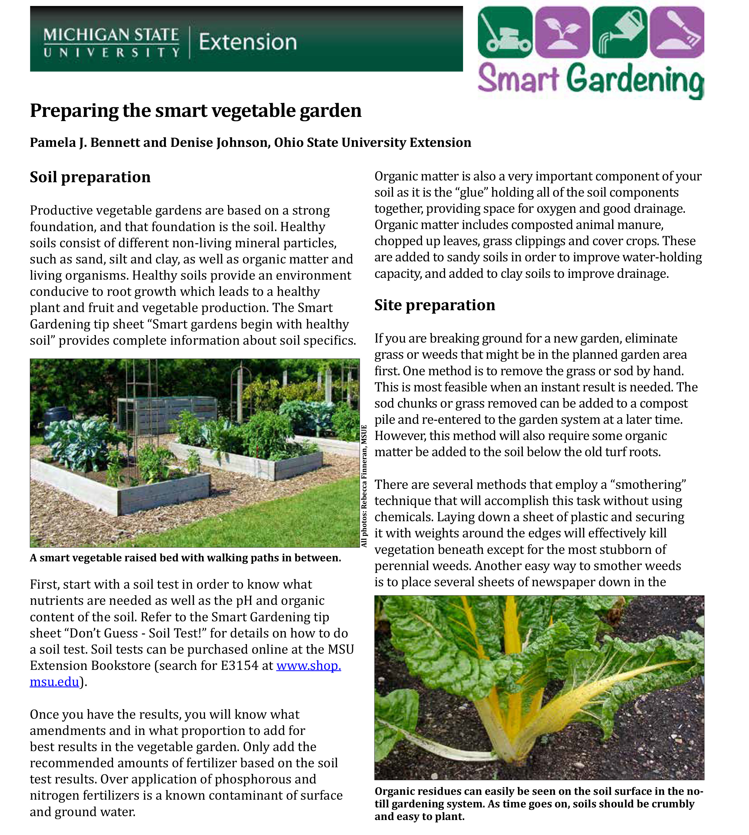 Preparing the smart vegetable garden