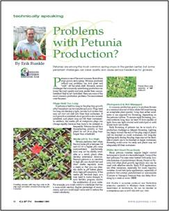 Problems with petunia production?