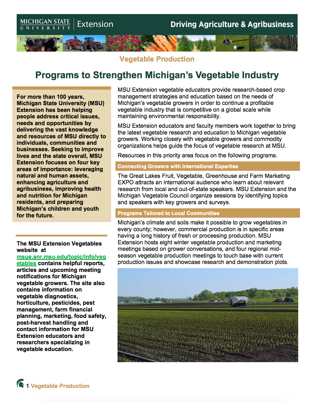 Programs to Strengthen Michigan's Vegetable Industry