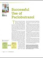 Successful use of paclobutrazol