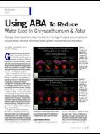 Using ABA to reduce water loss