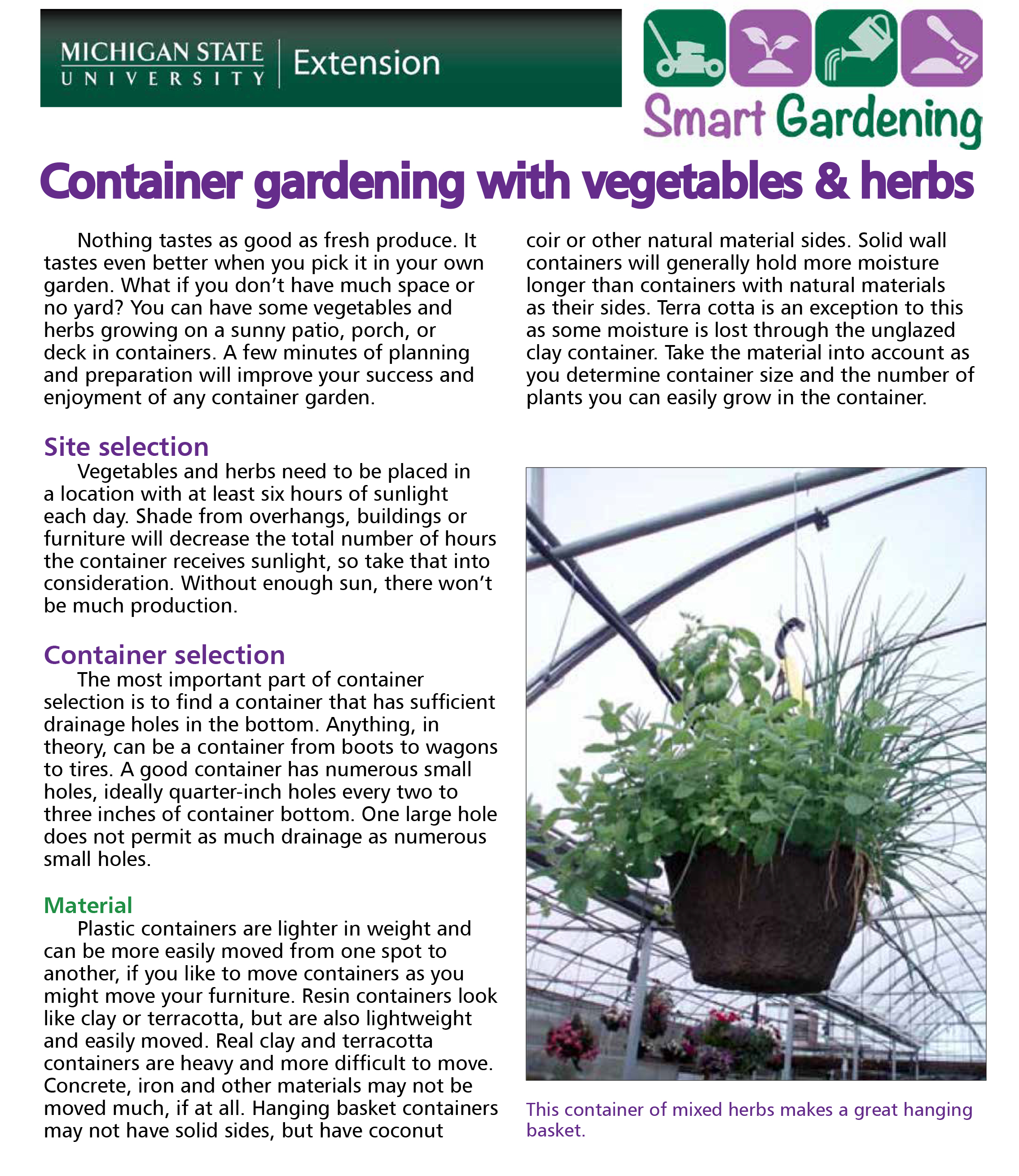 Container gardening with vegetables & herbs tip sheet