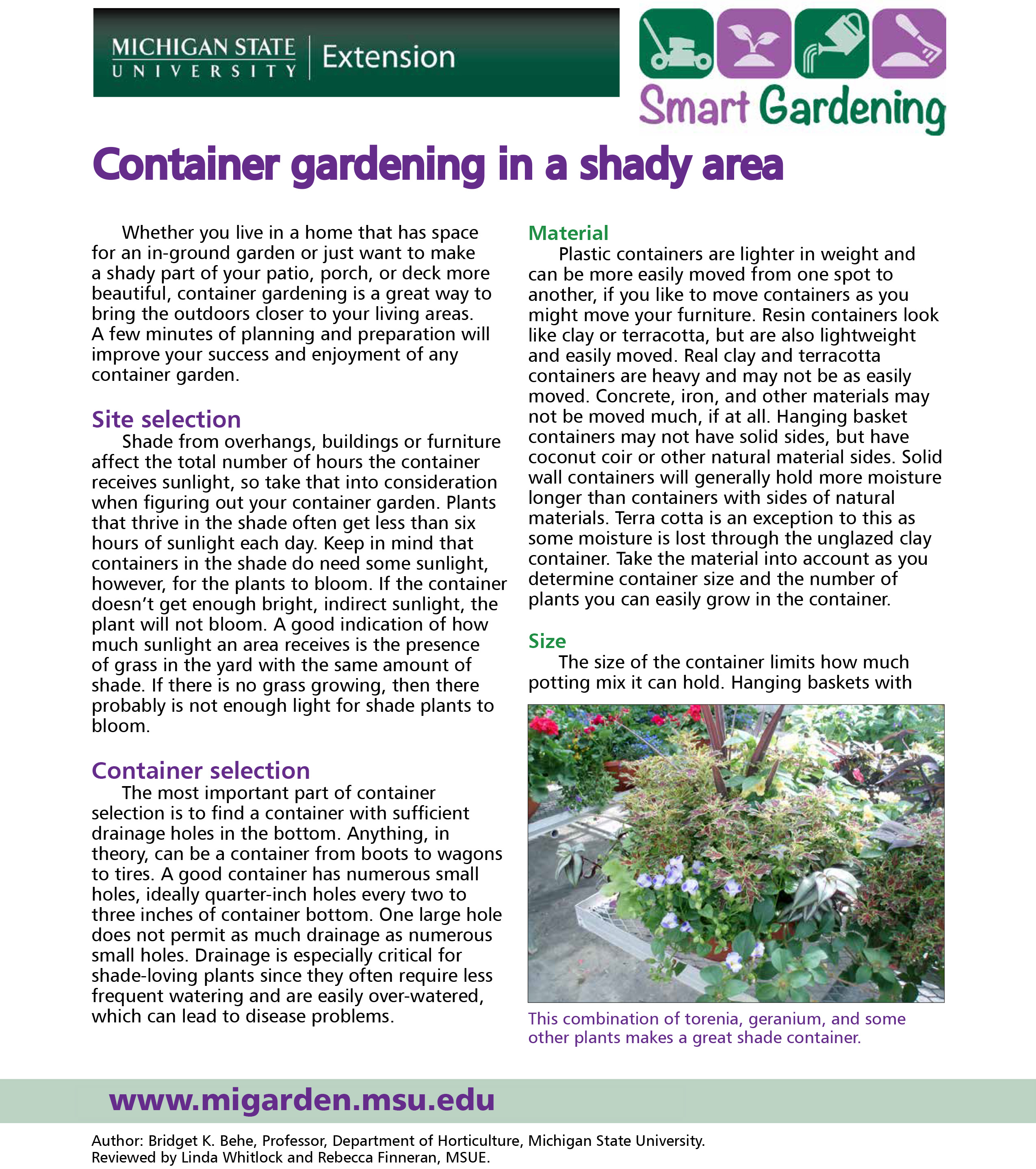 Container gardening in a shaded area tip sheet
