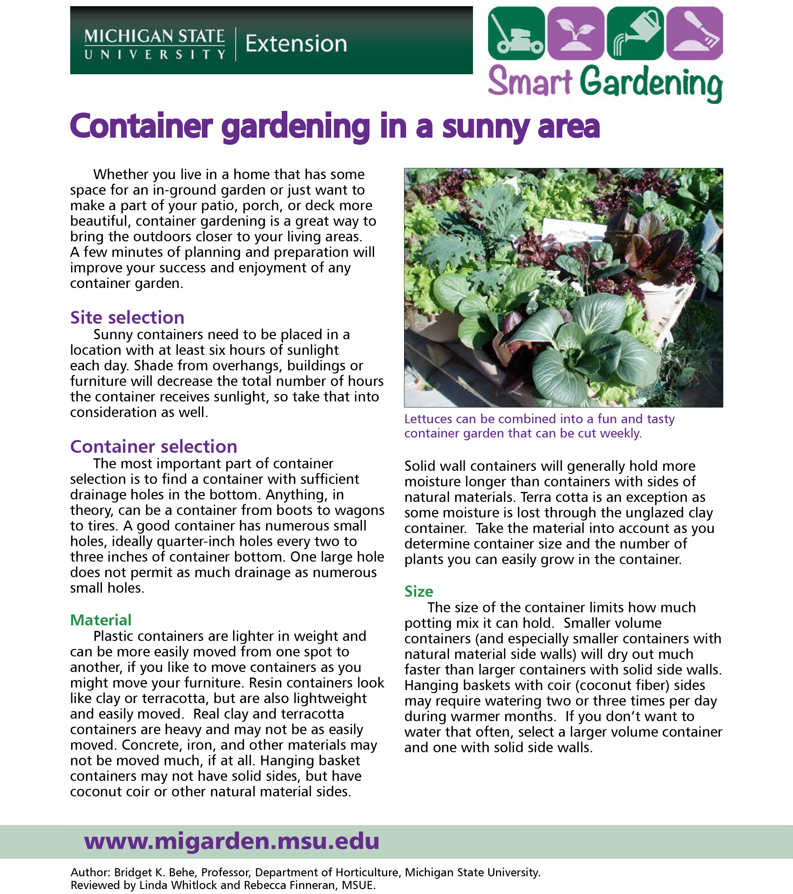 Container gardening in a sunny area tip sheet