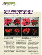 Cold and sustainable poinsettia production.